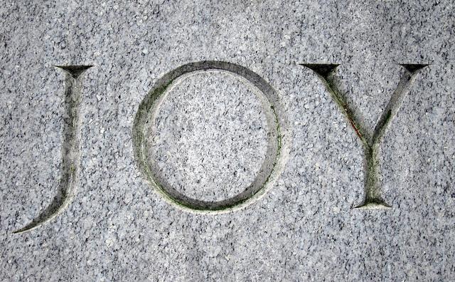 joy in stone